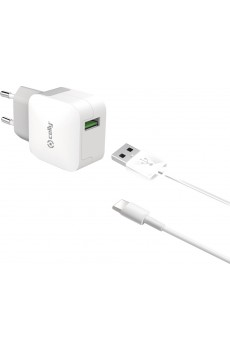 Celly Reiselader 2.4A mit 1 USB Port inkl. USB Typ C Kabel white, 1,0m